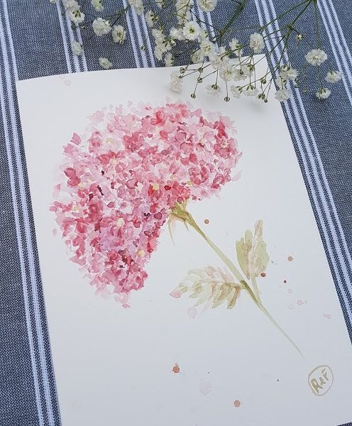 Hydrangea Watercolour Painting by Rose and Foxgloves