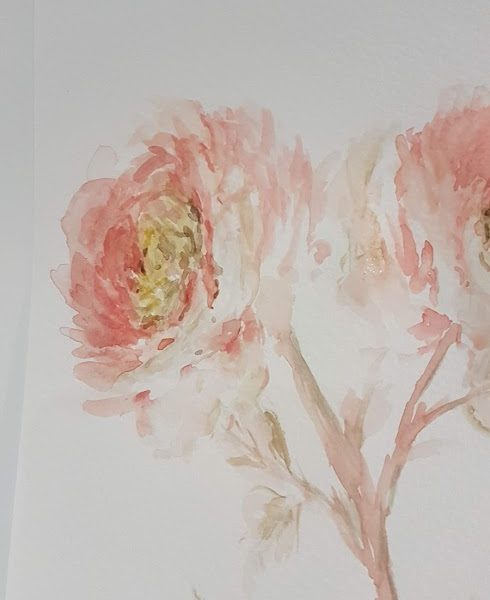 French Peonies Signed Watercolour Doodle