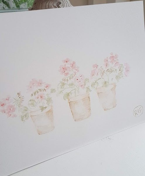 Old Pots of Pink Geraniums watercolour
