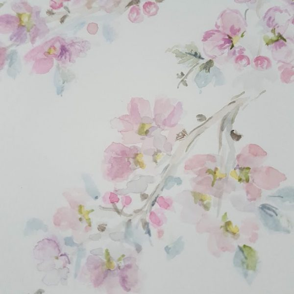 Dreamy Apple Blossom Evening Watercolour doodle by Rose and Foxgloves